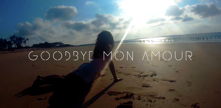 visuelclipgoodbyemonamour-763px